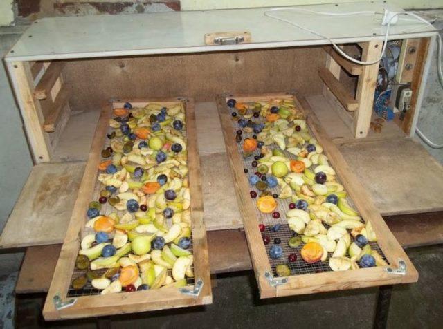 Самодельная сушилка для овощей и фруктов: электрическая, на солнце